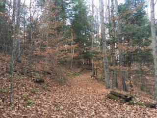 Mather Rd, Laurens, NY 13796