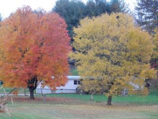 66 Twin Oaks Rd, Canton, NC 28716