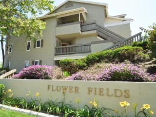2666 Flower Fields Way, Carlsbad, CA 92010