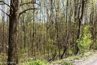 3 Orchard Tree Drive, Front Royal VA