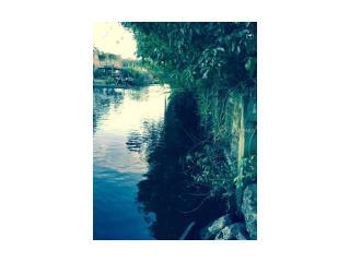 10825 Magnolia Street, Riverview FL