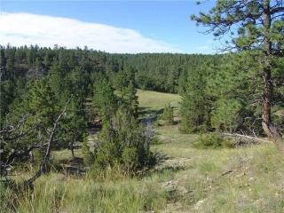 68 Winchester Drive, Roundup MT