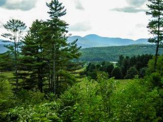 74 Elmore Mountain Rd, Stowe, VT 05672