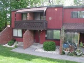 31 Laurelbrook Ct, Cresson, PA 16630