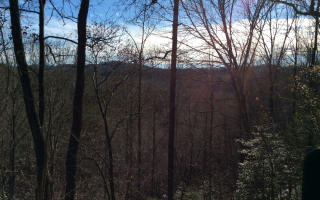 10 Whipporwill Walk Road, Mineral Bluff GA