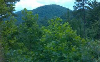 28.5 Ac Quail Ridge Road, Blue Ridge GA