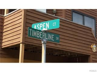 34 Aspen Ct, Nanuet, NY 10954