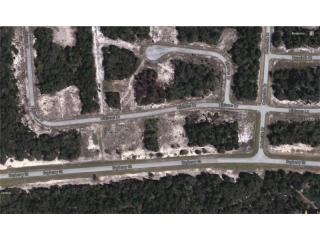 379 Hibiscus Drive, Poinciana FL