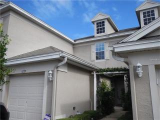 6229 Duck Key Ct, Tampa, FL 33625
