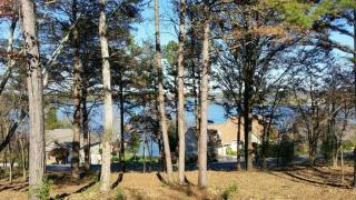 208 Coyatee View, Loudon TN