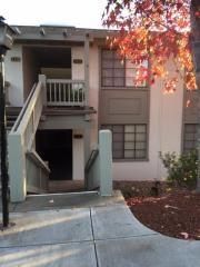 5334 Cribari Gln, San Jose, CA 95135