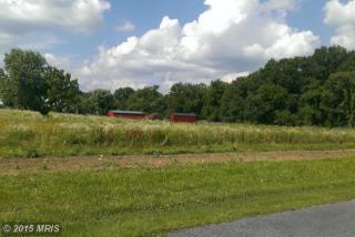 Back Road, Woodstock VA