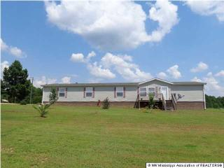 366 Davis Road East, Coldwater MS
