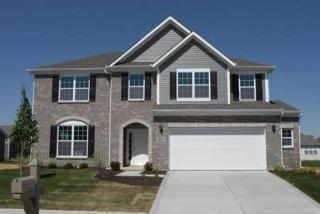 The Spring Hill at Tipton Lakes by M/I Homes