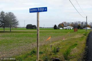 Lot 2 Guinea Ridge Drive, Easton MD