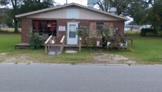124 John E Clark Rd, Reidsville, GA 30453