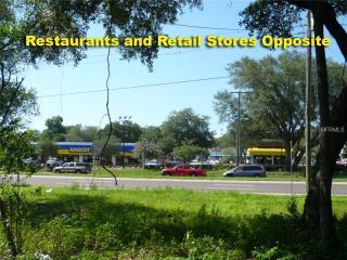11211 East Dr Martin Luther King Jr Boulevard, Seffner FL