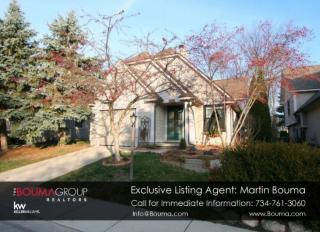 2542 Country Village Court, Ann Arbor MI