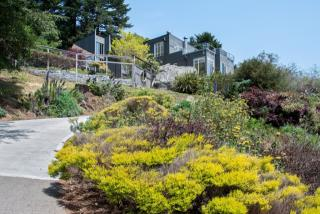 7230 Panoramic Highway, Stinson Beach CA