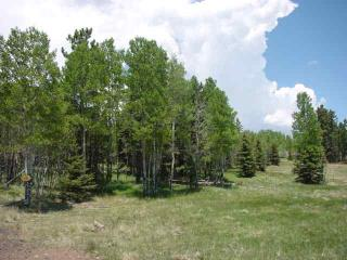 Lot 183 Spotted Owl Circle, Angel Fire NM