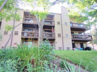 52 Oak Hill Colony #10, Fox Lake IL