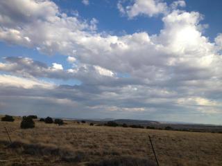 8608 Cupples Trail, Snowflake AZ