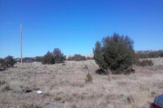 Lot 13 Tamarack Drive, Concho AZ