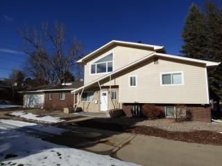 295 S Jasmine St, Denver, CO 80224