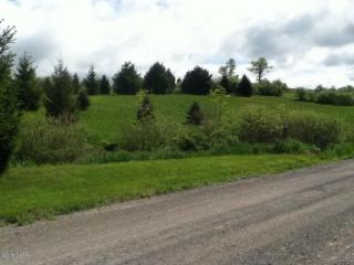 Griffith Road, Tyler Hill PA