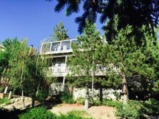 614 Cove Drive, Big Bear Lake CA