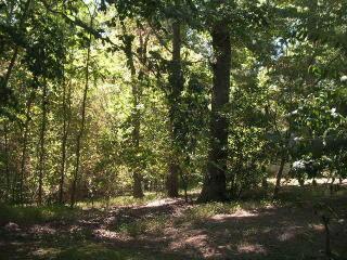 1116LOT Sam Lions Trail, Martinsville VA