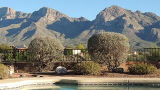 11051 N Guava Dr, Tucson, AZ 85737