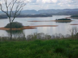 2339 Windswept Way, Morristown TN