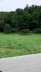 BORDEN-GREE Rd, Borden, IN 47106