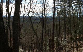 9 Whipporwill Walk Road, Mineral Bluff GA
