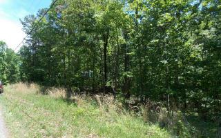 Camp Branch Road, Ellijay GA