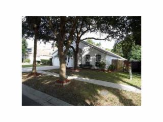 11723 Carrollwood Cove Drive, Tampa FL