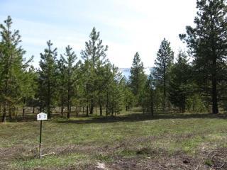 2 Marten Creek Road, Trout Creek MT
