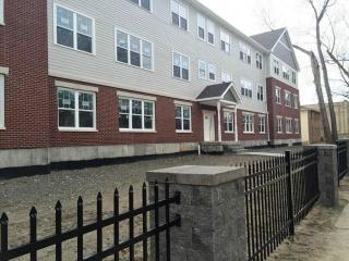 241 A S Allen St, Albany, NY 12208