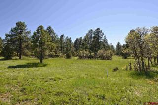 610 South Badger Trail, Ridgway CO