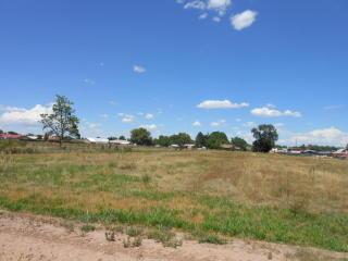 Willow Trail, Bosque Farms NM