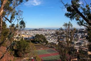 Buena Vista Park, San Francisco, CA 94114
