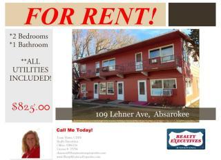 109 Lehner Ave, Absarokee, MT 59001