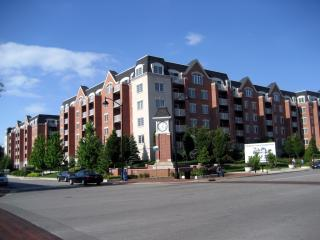 4833 N Olcott Ave #309, Harwood Heights, IL 60706