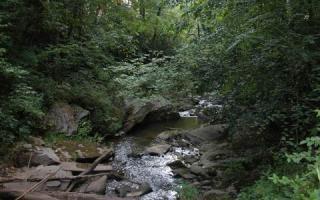 Geisky Creek Road, Hayesville NC
