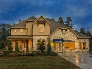 Woodridge Forest 70 by Ryland Homes