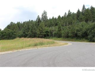 14271 Timber Trail, Larkspur CO