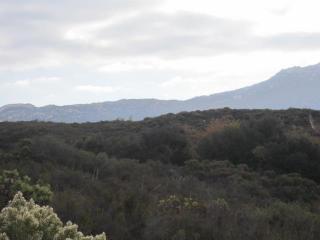 Montiel Truck Trail #17, Jamul CA