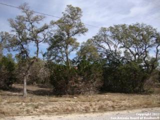 1141 Split Ridge Drive, Spring Branch TX