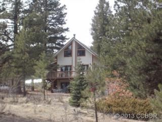 853 Basin Drive, Cotopaxi CO